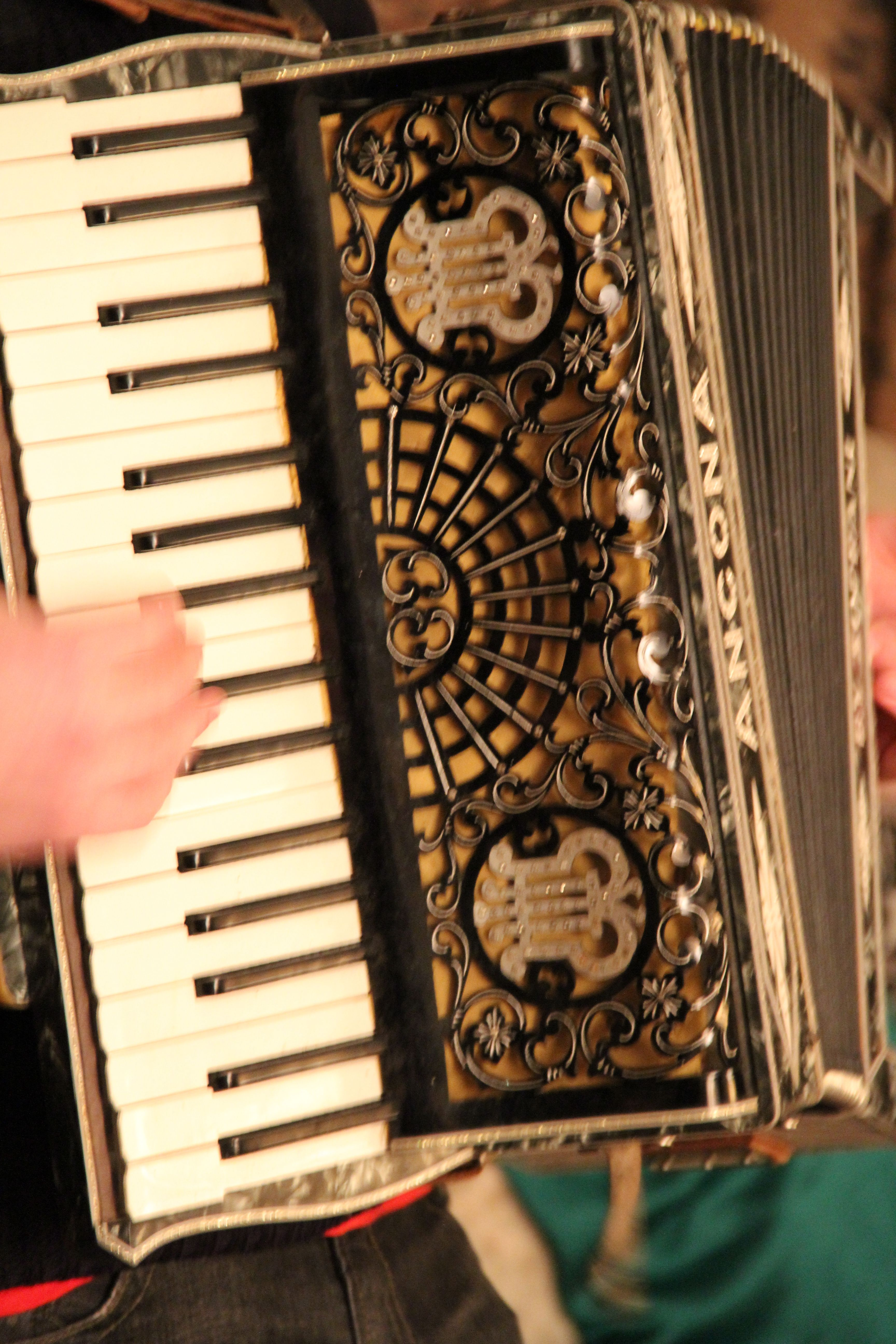 Squeeze Box | Accordians! in 2019 | Piano accordion, Music, Musical