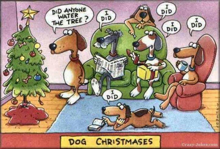 Funny Dog Cartoon Dog Xmas Funny Christmas Cartoons Funny Christmas Pictures Christmas Jokes