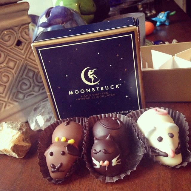 These are too cute! My mom brought these little truffle critters back from the coast for me  #moonstruck #chocolates #handcrafted #truffles #animals #Padgram