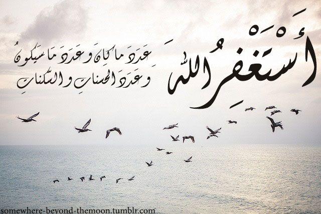 أستغفرك ربي عدد ما كان و عدد ما سيكون و عدد الحسنات و السكنات Beyond The Sea Calligraphy Arabic Calligraphy