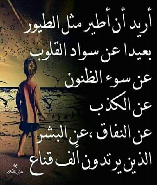 Izza Imzine S Post On Baaz Wisdom Quotes Life Funny Arabic Quotes Really Good Quotes