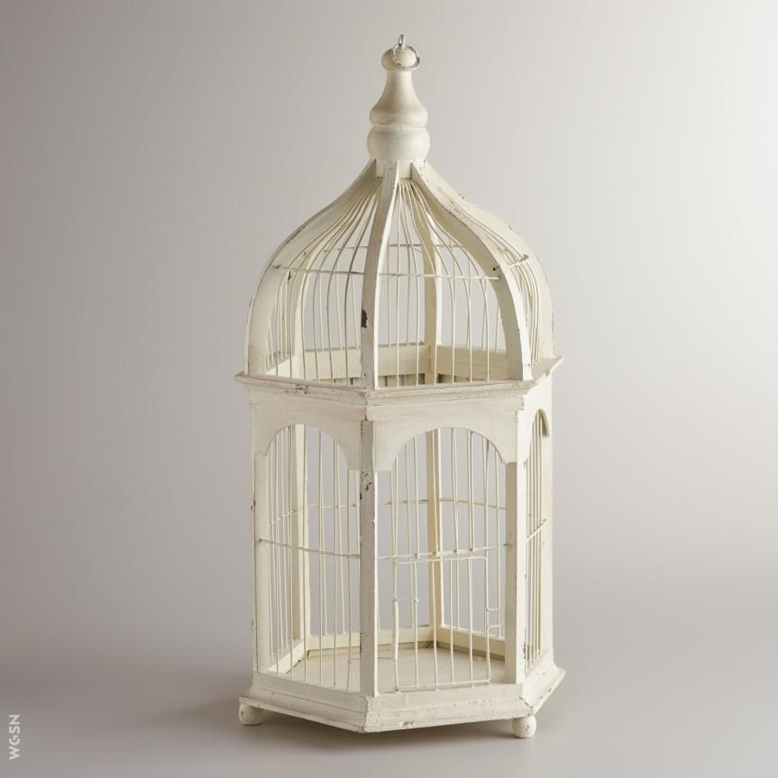birdcage Composed Home Pinterest