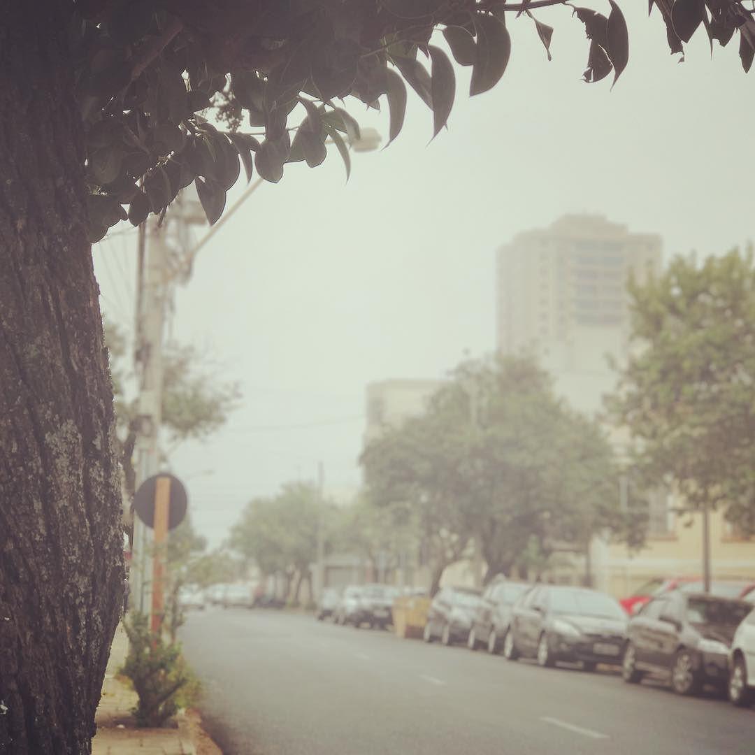 Bom dia Araraquara: Morada do Sol  #estoporado #frio #nepouconao