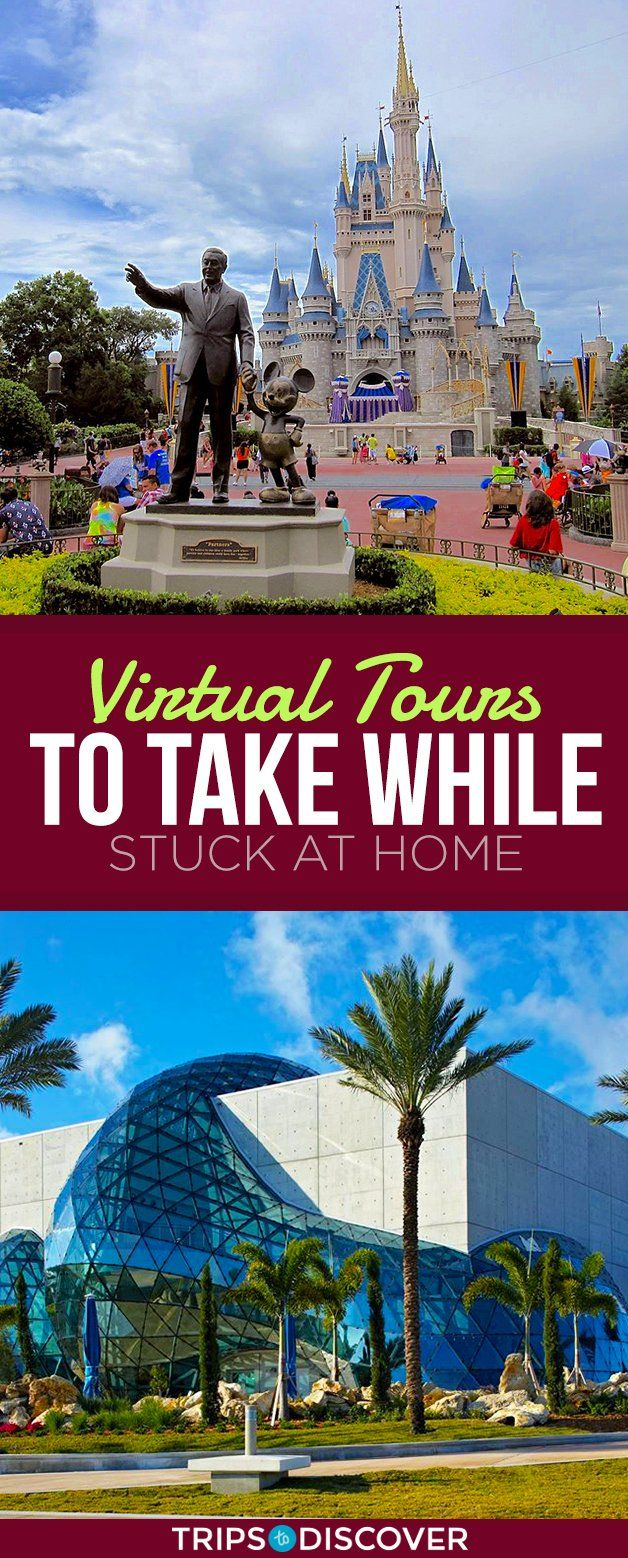 12 Virtual Tours in Florida You Can Take While Stuck at