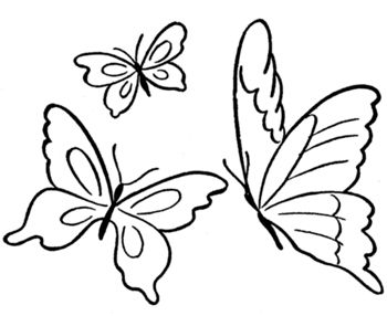 Monarch Butterfly Coloring Page Insects Butterfly Coloring Page Butterfly Outline Butterfly Printable