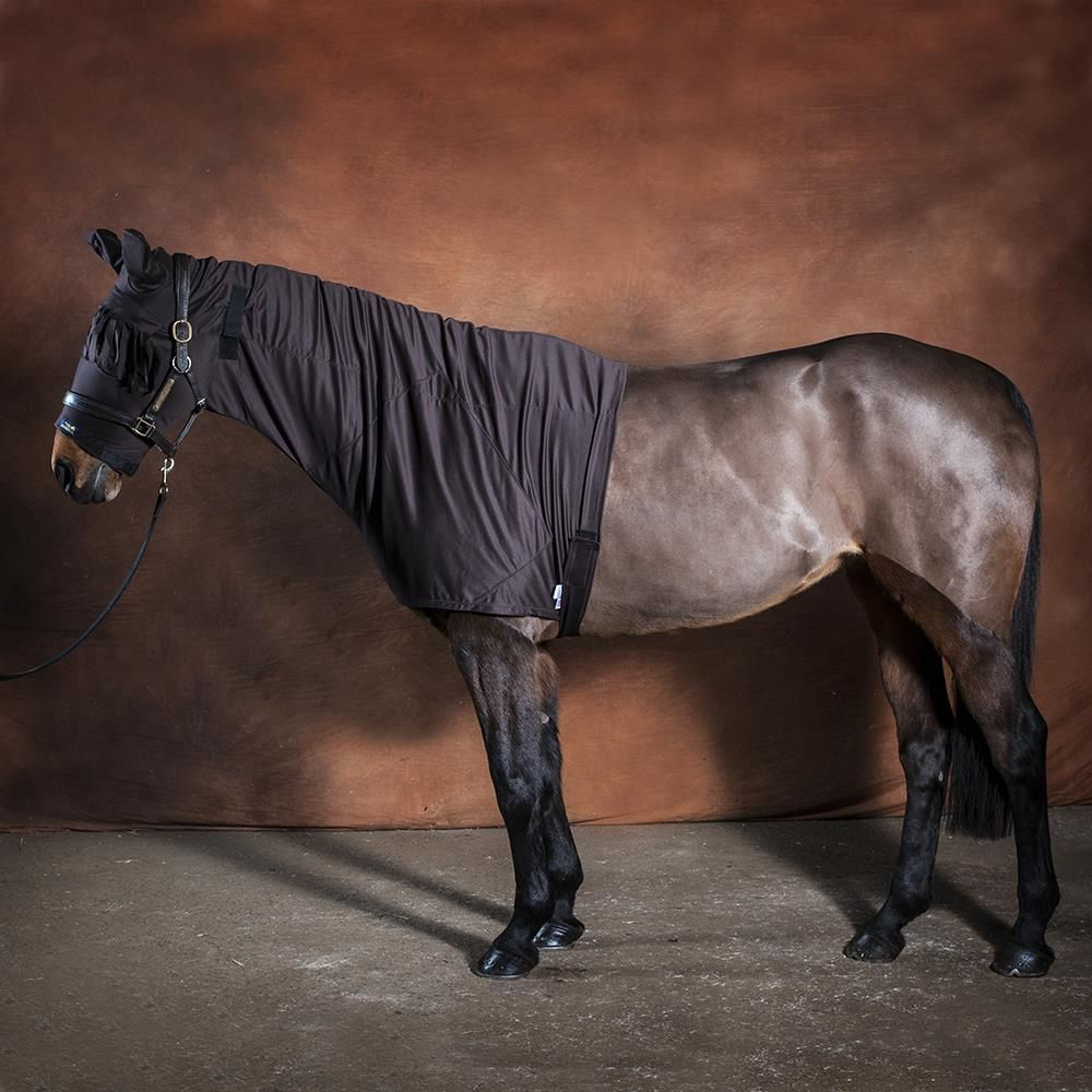 Fly Protection For Horses Anti Itch