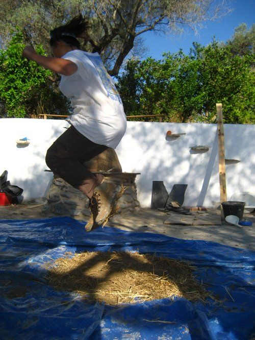 10 Tips for Getting Your First WWOOF Gig