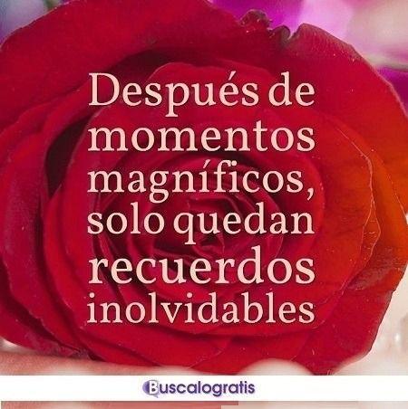 Frases De Recuerdos De Amor Recuerdos Frases Frases Y
