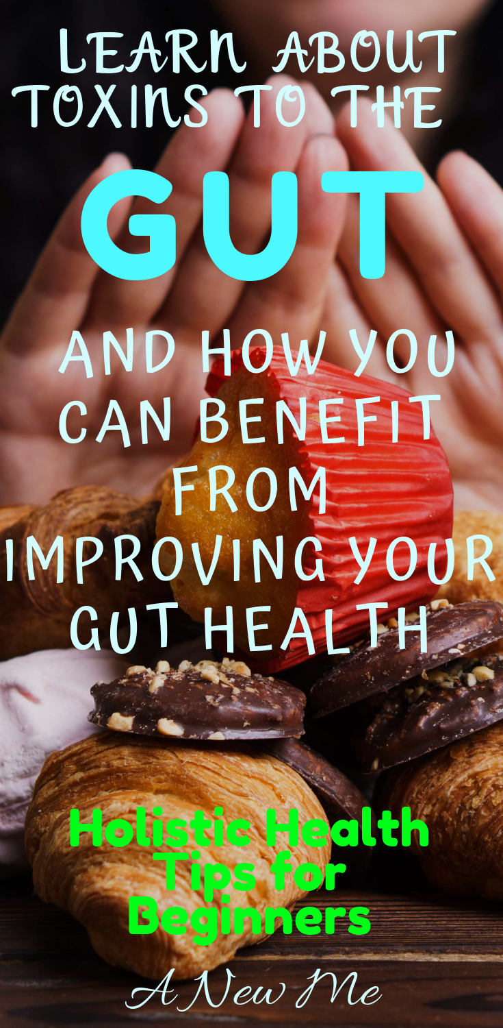 19 Toxins to the Gut: Avoid these to Improve Your Mental Health Holistic Health Tips for Beginners, Medicinal Herb Garden