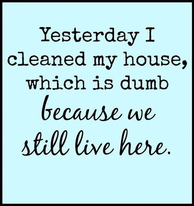 Yeppers, we live and work here with a big furry dog and two cats.  Fur-babies and fur-balls are the trade off for all the love they give us back. But cleaning...yeah right, stays clean like maybe an hour.