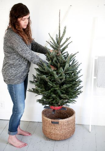 Put a bucket upside down in a large basket; small tree in small