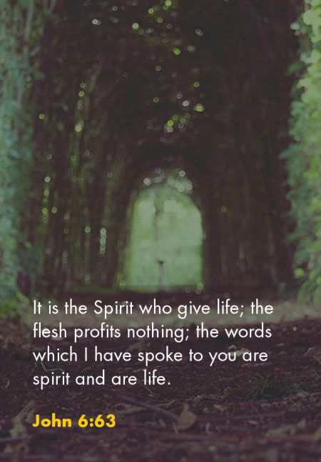 John 6:63 It is the Spirit who give life; the flesh profits nothing; the words which I have spoke to you are spirit and are life. From: Recovery Version Bible, quoted at, http://bit.ly/EatDigestX