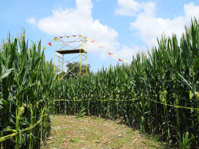 Opening Day Is Right Around The Corner August 31 2013 Until November 2 2013 Corn Maze Farm Market Farm