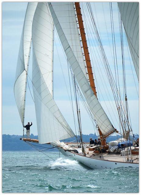 Sailing...  www.maxprop.it