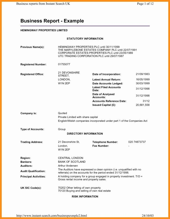 formal business report example lovely business report
