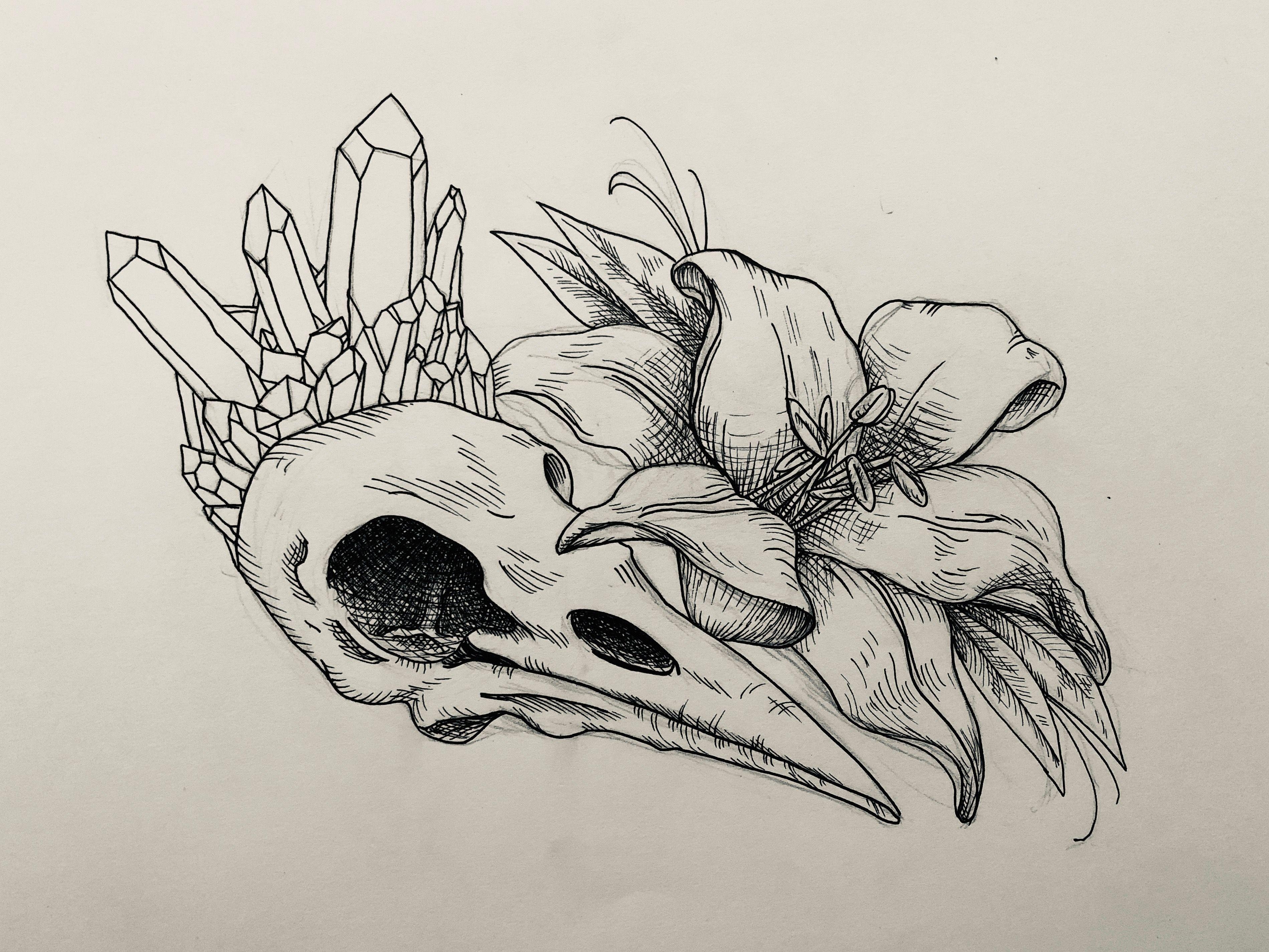 Crystal Lily Bird Skull Tattoo Animal Skull Drawing Animal Skull Tattoos Bird Skull Tattoo