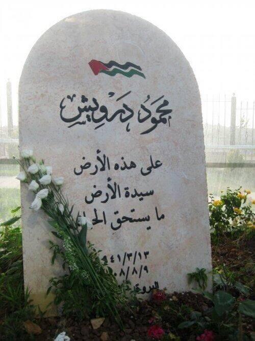 على هذه الأرض سيدة الأرض ما يستحق الحياة محمود درويش Phone Wallpaper Images Mood Instagram Flower Garden Pictures