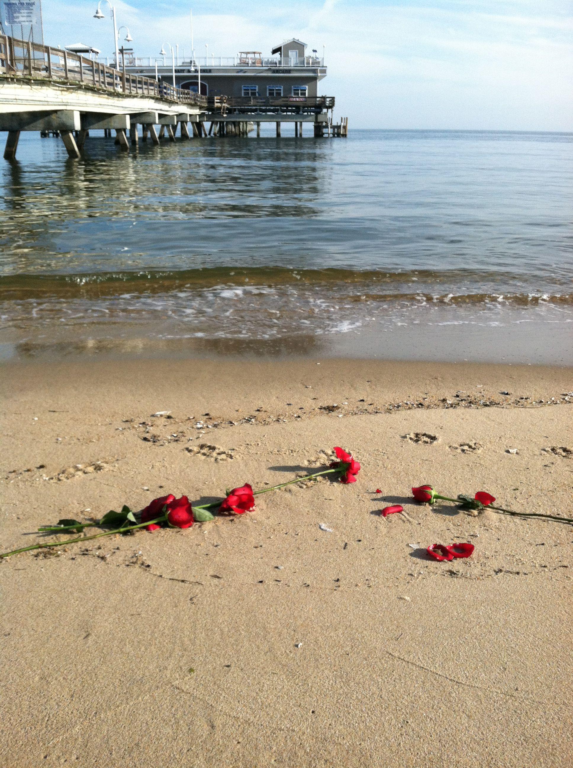Ocean View Beach Norfolk Va