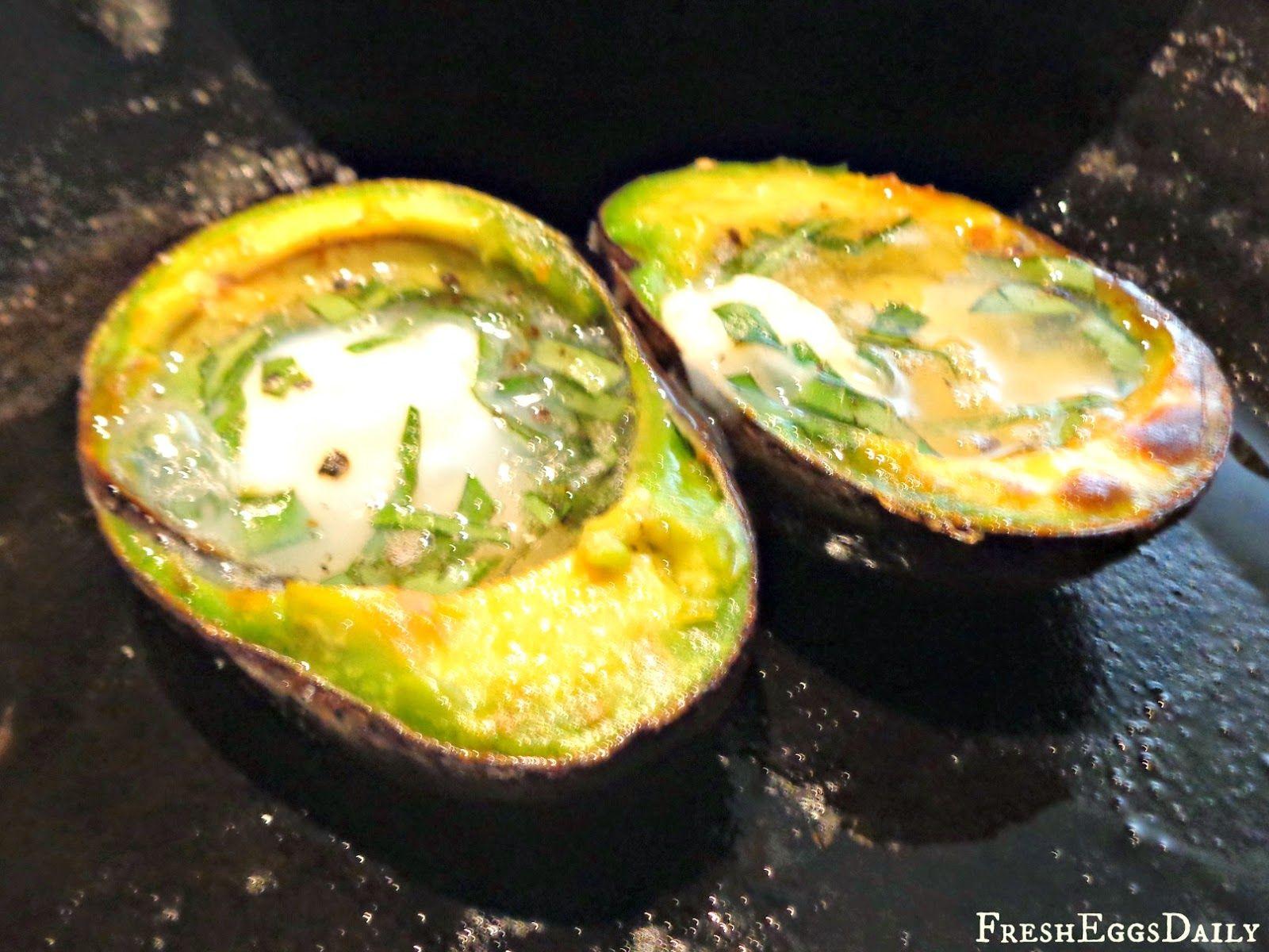 egg cheese and avacado