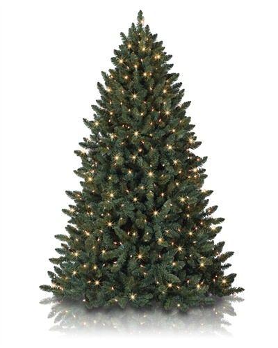 Balsam Spruce Spruce Christmas Tree Rotating Christmas Tree Realistic Christmas Trees Pre lit rotating christmas tree