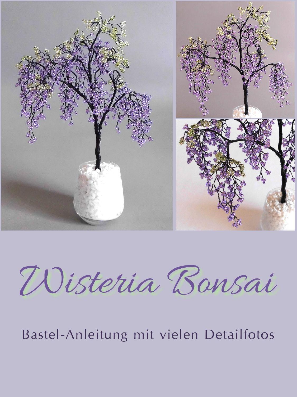 Bonsai Anleitung Anfänger