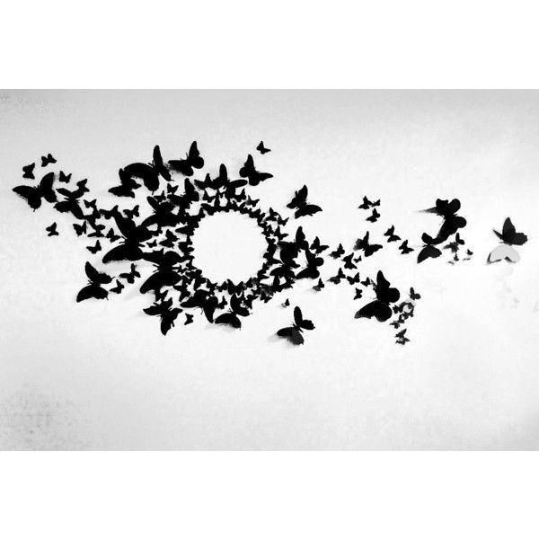Free US Shipping- 80 3D Butterfly Wall Art Circle Burst ($60) ❤ liked on Polyvore