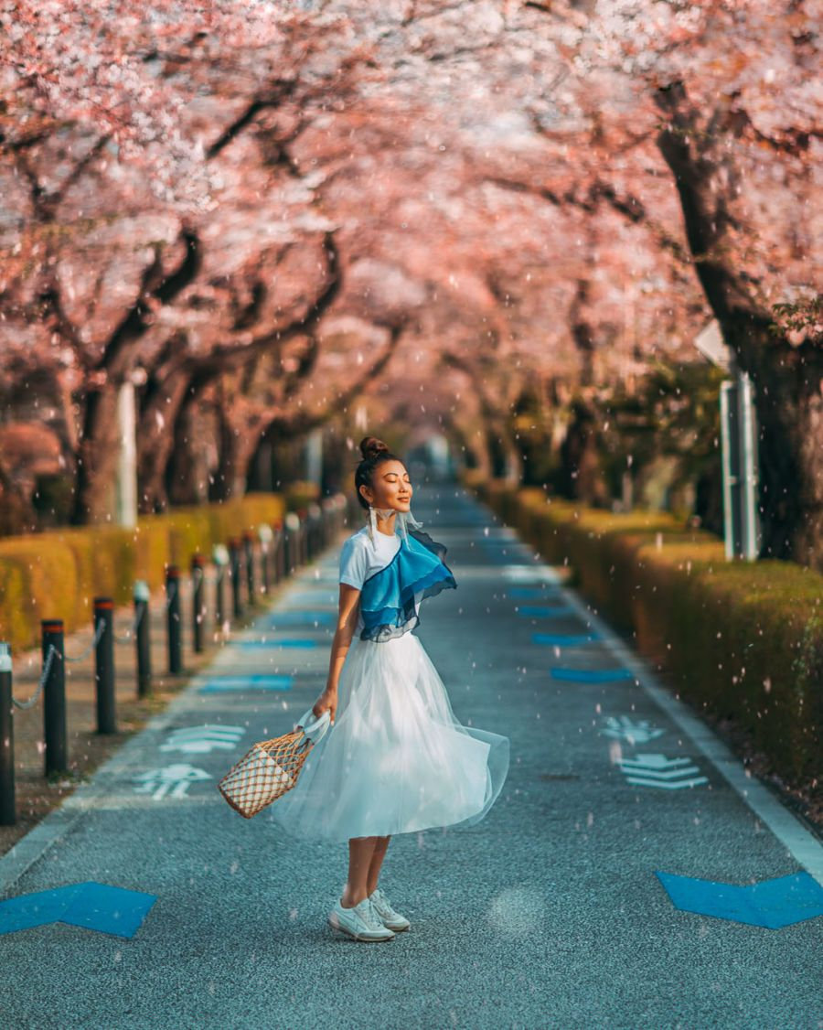 Instagrammable Spots In Japan 7 Gorgeous Spots For Cherry Blossoms In Japan Cherry Blossom Japan Blog Photoshoot Cherry Blossom Outfit