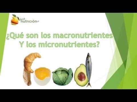 video de nutrición básica