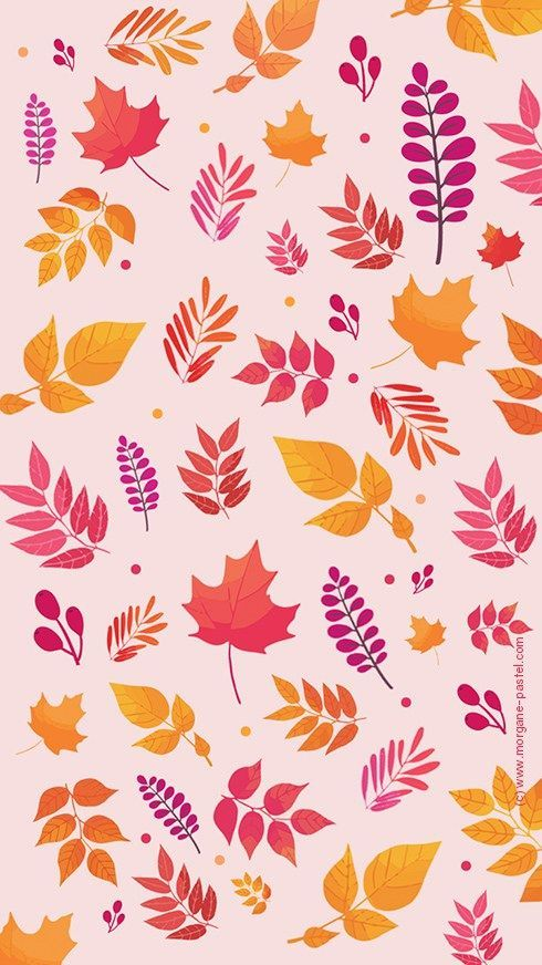 Fond D Ecran Automne Octobre 2017 Tiffany Savoye Automne Decran Fond Octobre Savoye Tif Iphone Wallpaper Screen Savers Wallpapers Pattern Wallpaper