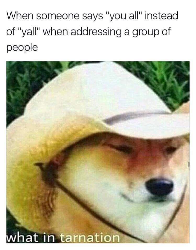 Dank Doggos