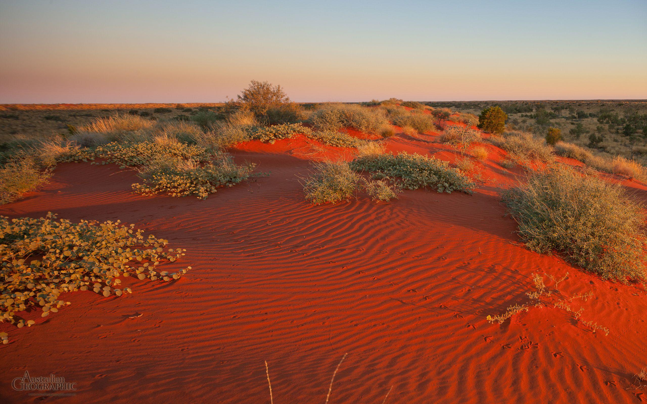 The stunning red desert Australian desert, Australian