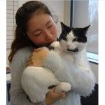 A cat who lost a leg after being thrown from a moving car has been reunited with his petmom, who had been searching for her missing pet for a few days.