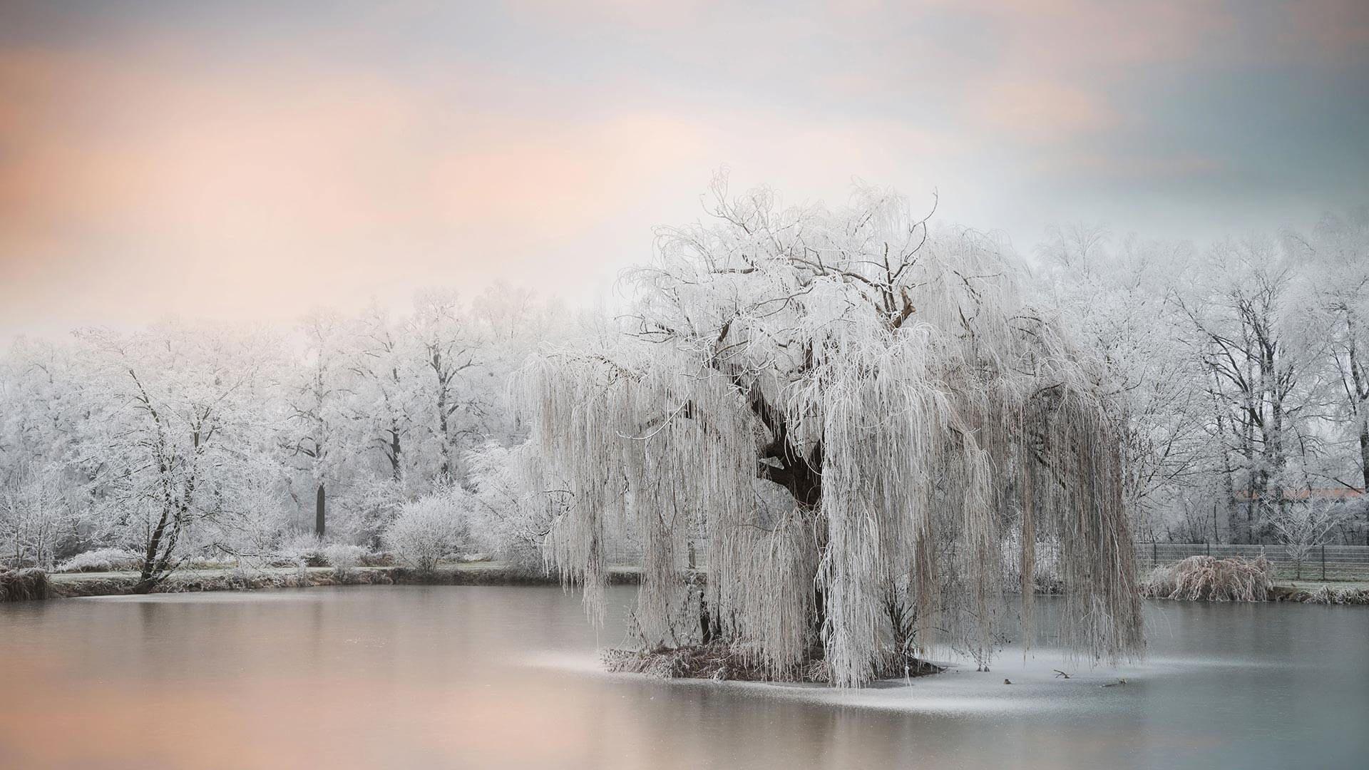 Pin By Alejandra Nunez On Fondos White Canvas Art Best Landscape Photography Winter Landscape
