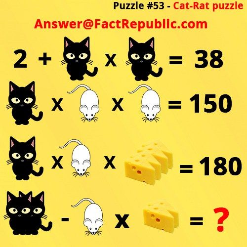 Interesting puzzles weird and interesting pinterest brain puzzle 53 cat rat puzzle answer cat rat cheese whatsapp puzzle ccuart Gallery