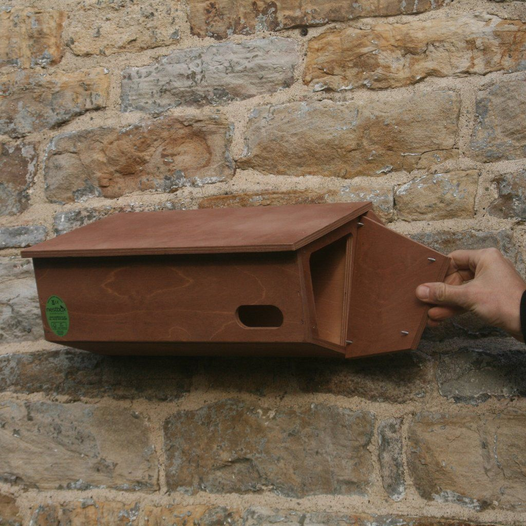 Swift Nest Box Nesting boxes, Nest design, Swift bird