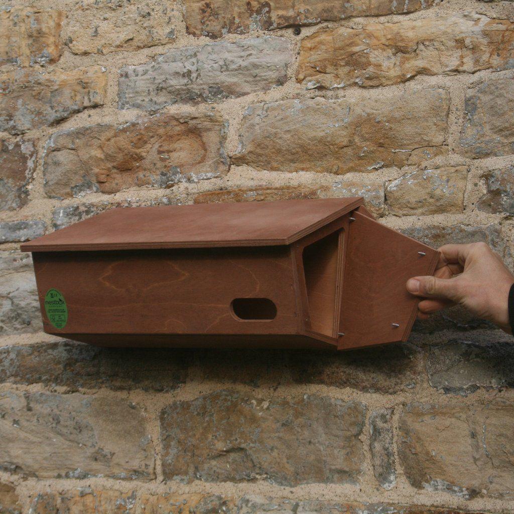 Swift Nest Box Nesting boxes, Nest design, Swift bird