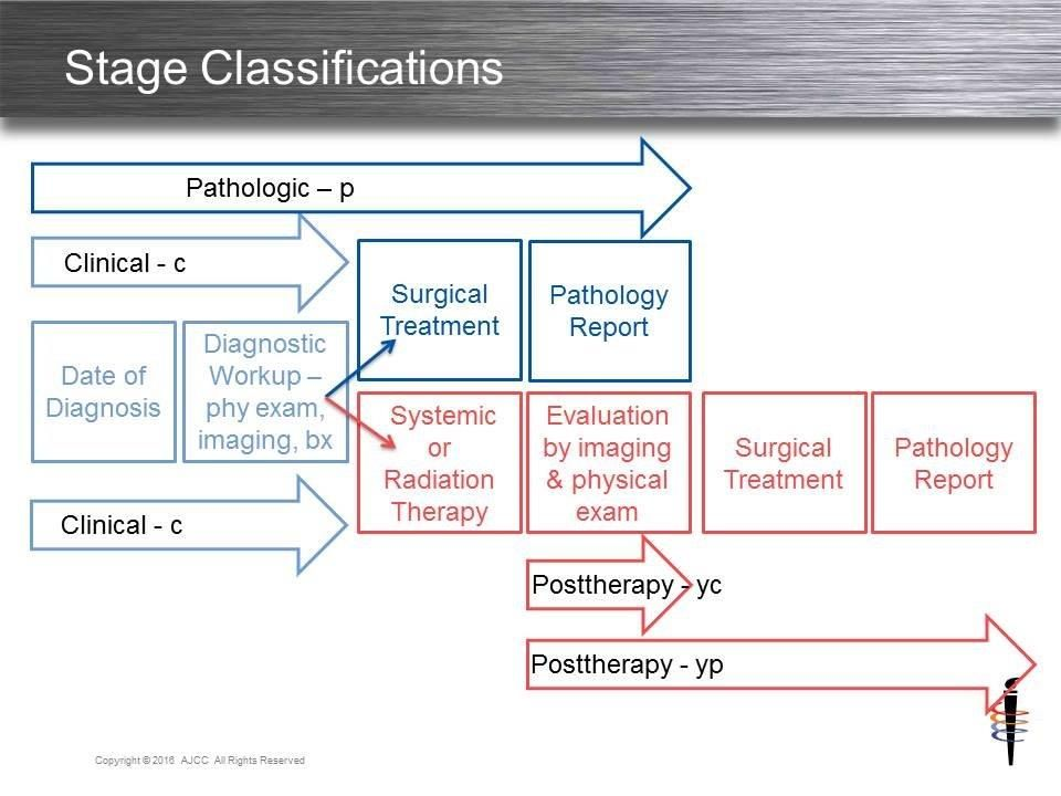 Pin by Lora Adams on Cancer Staging   Cancer, Stage