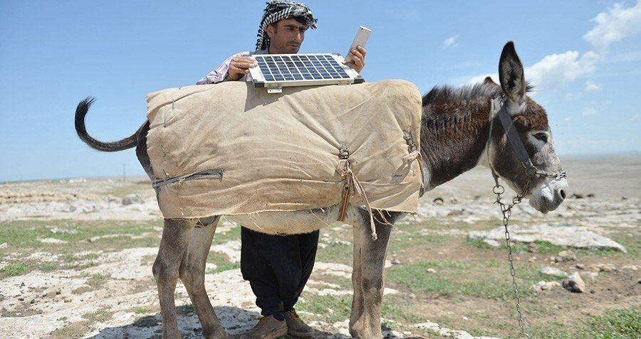Photo Of The Day: Shepherd Charges Phone Using A Donkey and A Solar Panel - http://all-that-is-interesting.com/shepherd-charges-phone?utm_source=Pinterest&utm_medium=social&utm_campaign=twitter_snap