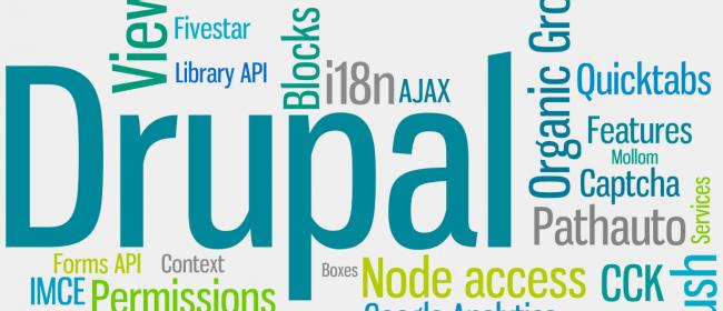 Five Reasons to Choose Drupal Content Management System.