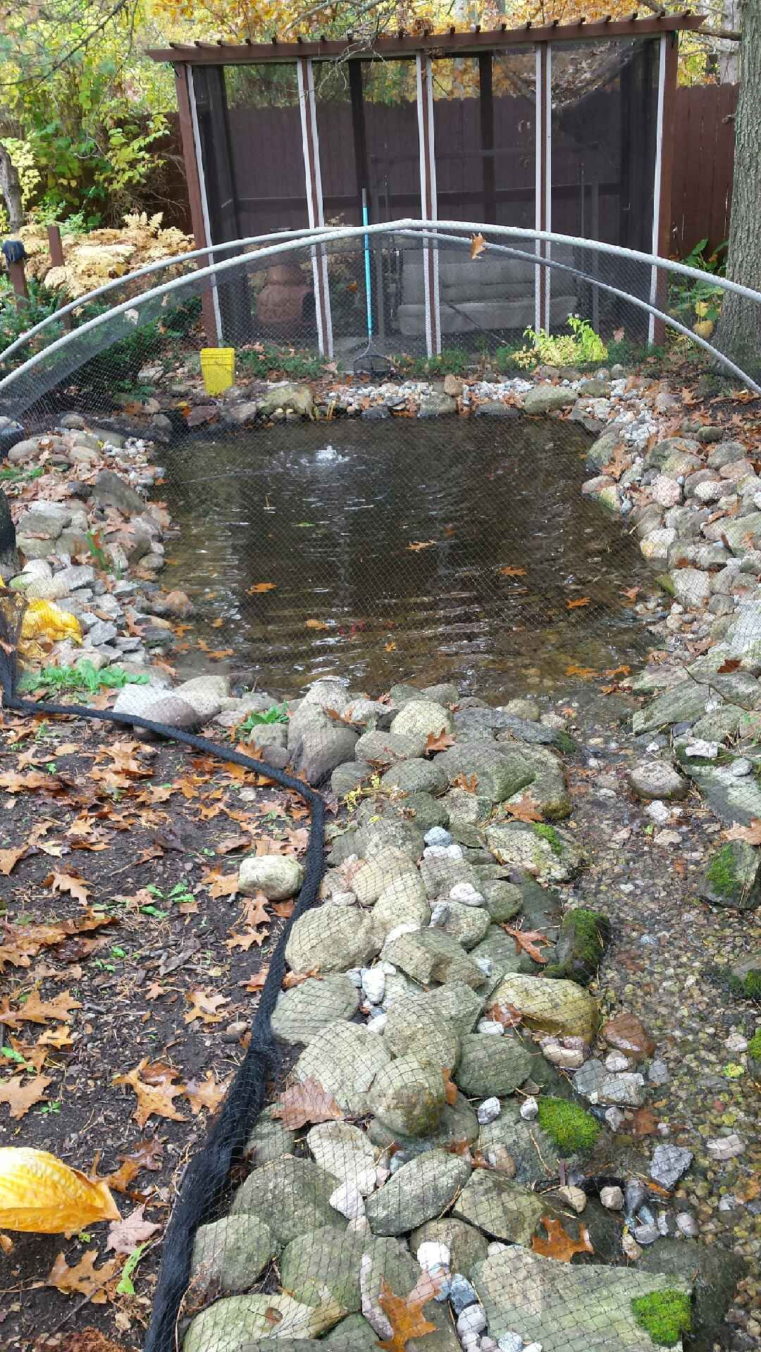 Retention Pond In Backyard - BACKYARD HOME