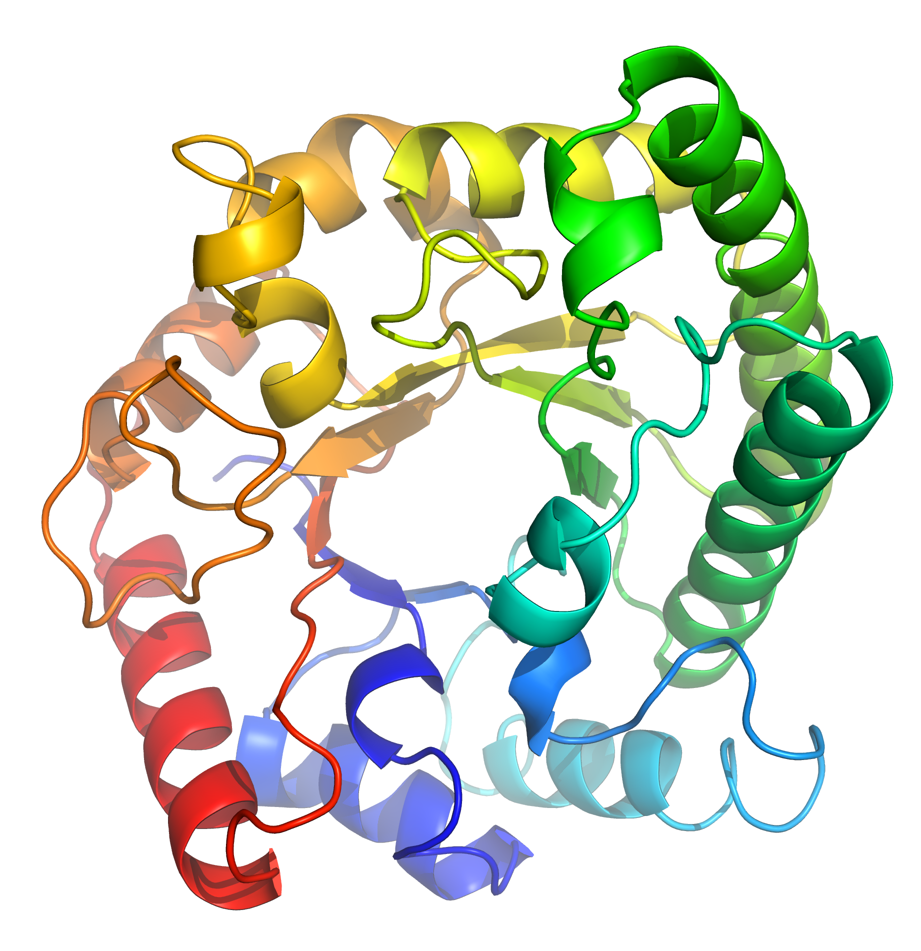 Protein has seven functions that distinguish from other