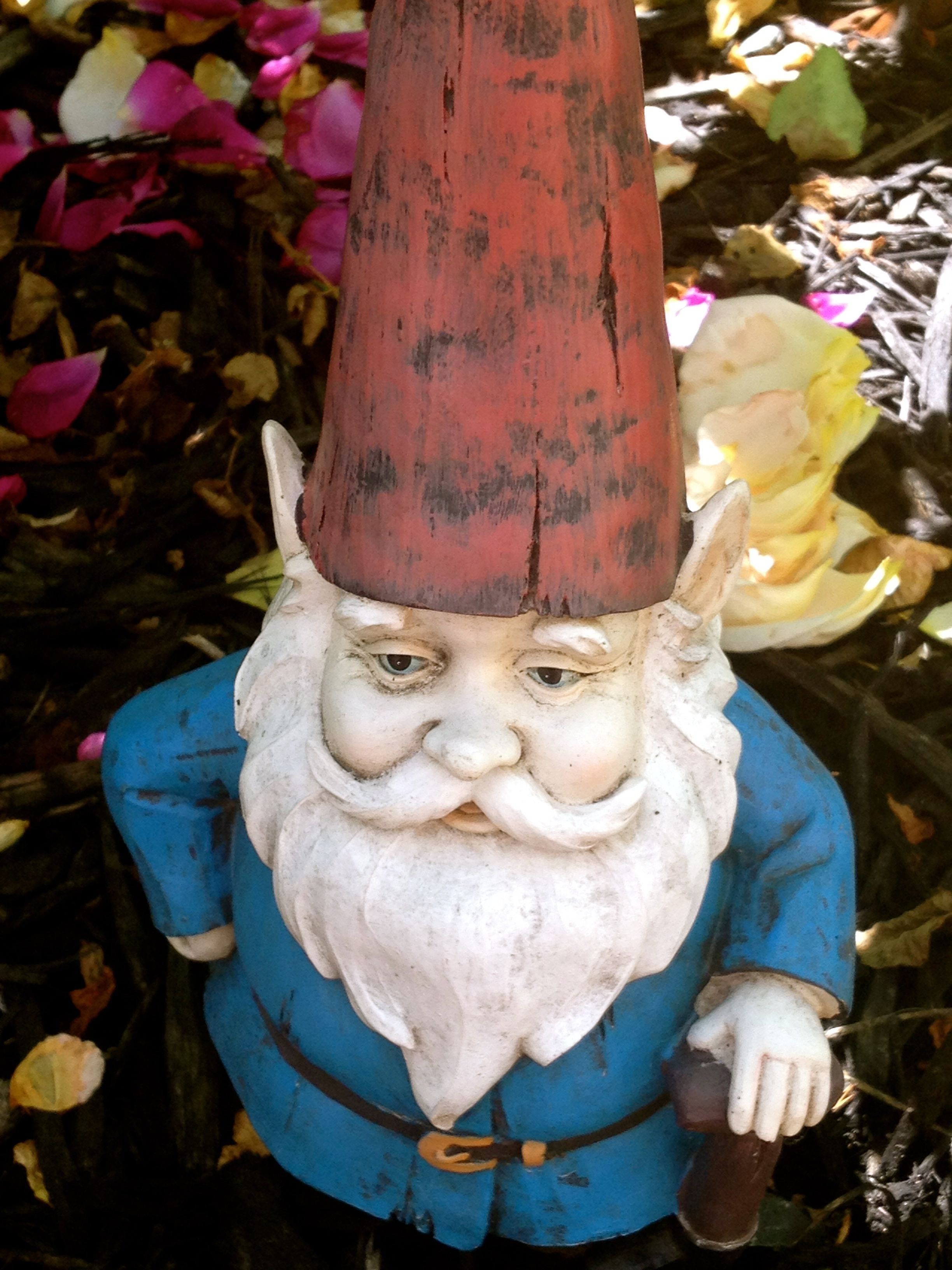 Gnome In My Rose Garden House Of History Llc