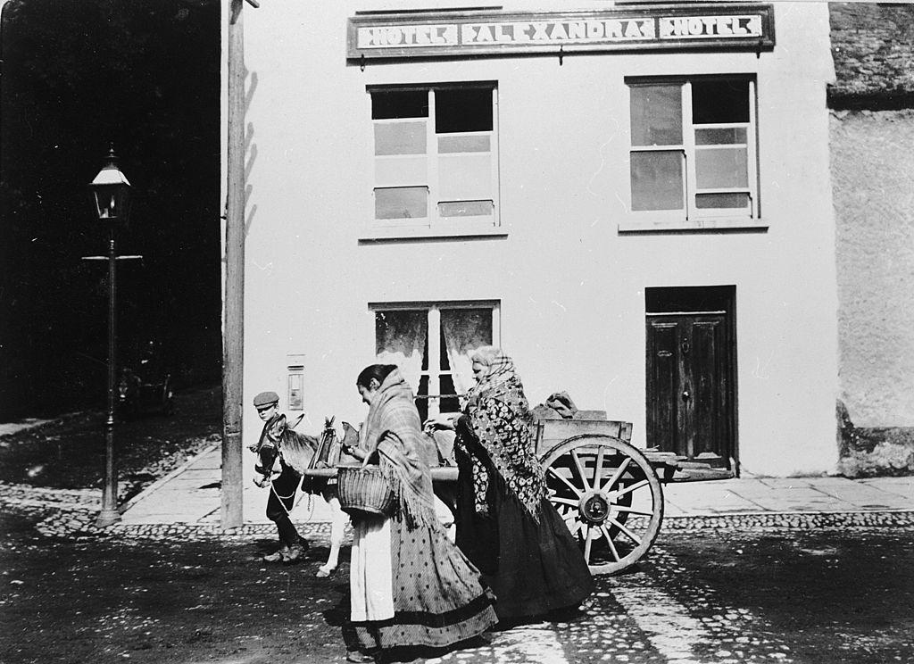 how was the irish potato famine solved