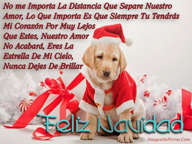 Frases De Navidad Para Un Amor Que Esta Lejos Imagenes Navidenas
