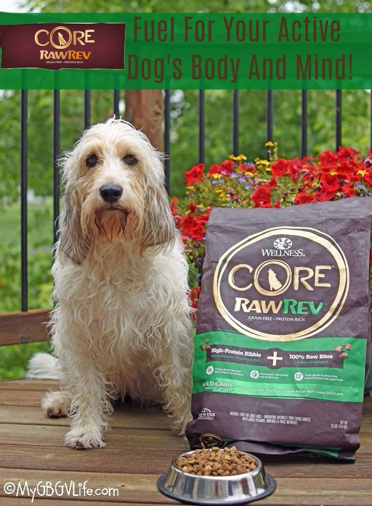 Fuel For Your Active Dog S Body And Mind Dog Food Recipes Dog