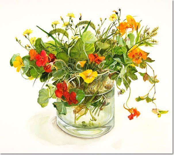 Цветы и растения Фуджико Хашимото (Hashimoto Fujico). Обсуждение на ...