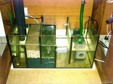 Pin de artur kuczy ski en akwarium aquarium aquarium for Estanque tortugas casero