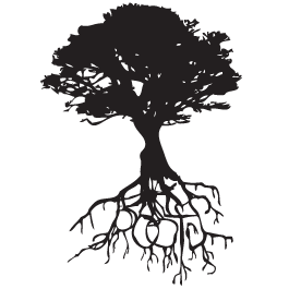 Oak Roots Wall Decals Dezign With A Z Tree Images Roots Tattoo Tree Tattoo