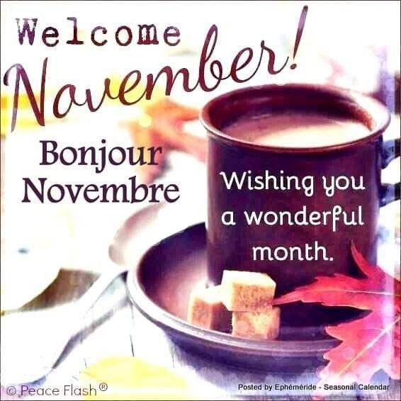 welcome november #welcomenovember welcome november #welcomenovember welcome november #welcomenovember welcome november #welcomenovember welcome november #welcomenovember welcome november #welcomenovember welcome november #welcomenovember welcome november