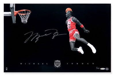 Michael Jordan Signature Dunk